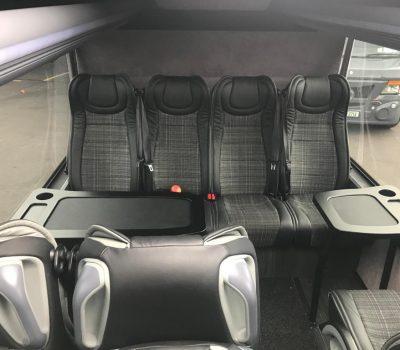 VIP Mini Coach